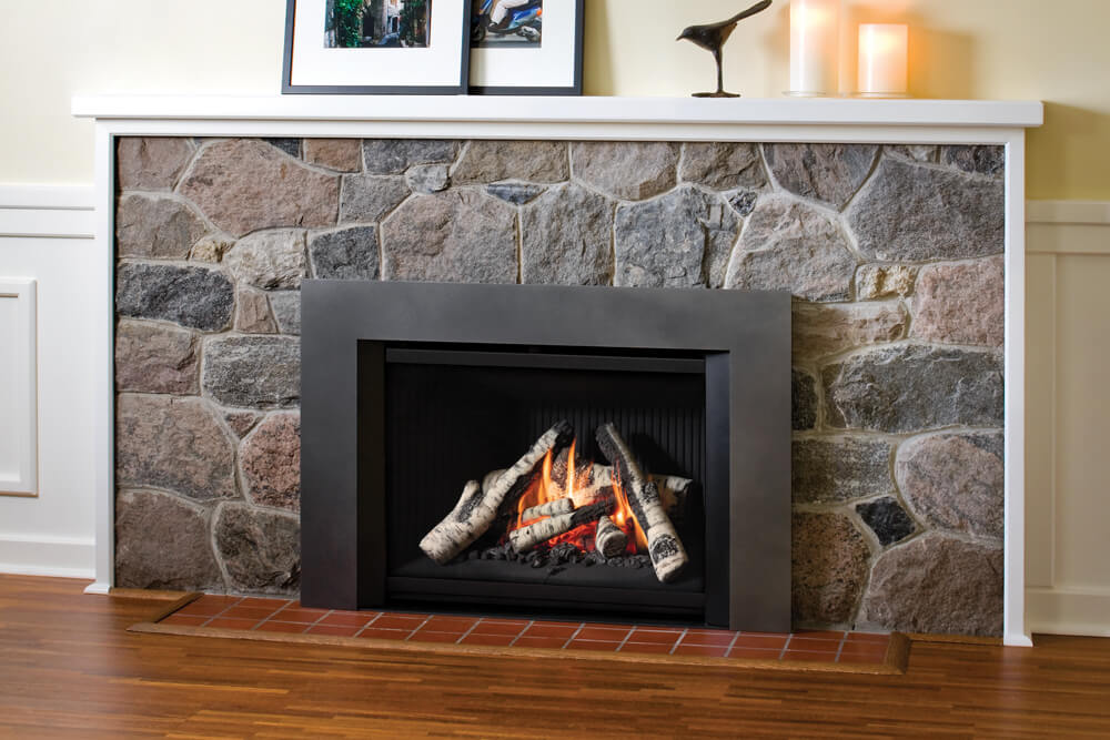 G4 Gas Insert | Valor Gas Fireplaces