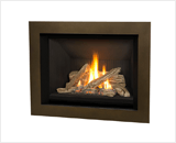 H5 Series shown with Traditional Logs and 4 Sided Surround in Bronze